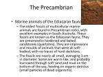the precambrian1