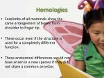 homologies2
