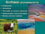 archaea archaebacteria