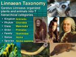 linnaean taxonomy