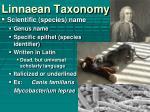 linnaean taxonomy1