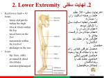 2 lower extremity 21