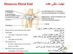 humerus distal end