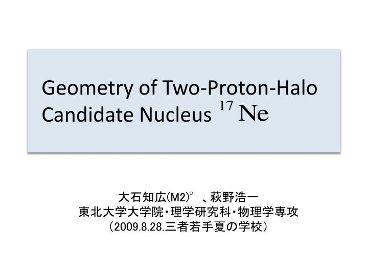 geometry of two proton halo candidate nucleus n.