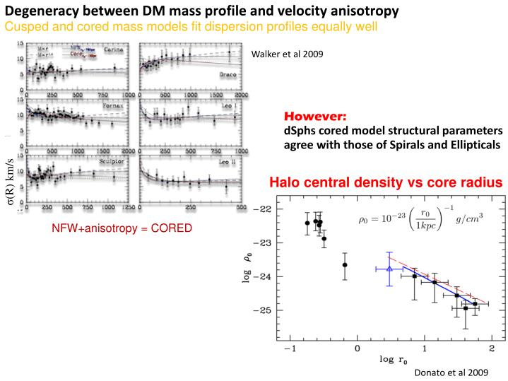 Degeneracy between DM mass profile and velocity anisotropy