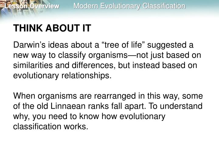 PPT - 18.2 Modern Evolutionary Classification PowerPoint ...
