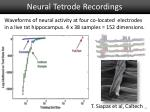 neural tetrode recordings