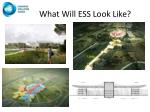 what will ess look like