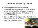 literature review by theme2