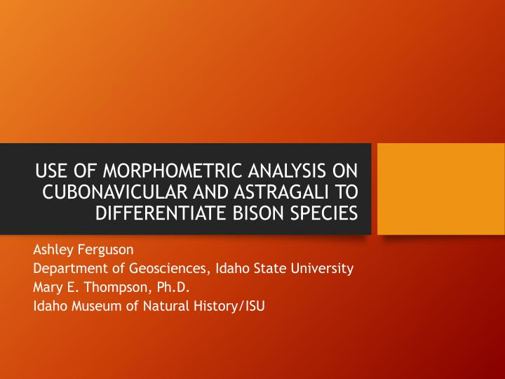 use of morphometric analysis on cubonavicular and astragali to differentiate bison species n.
