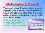 what s involved in phase 3