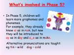 what s involved in phase 5