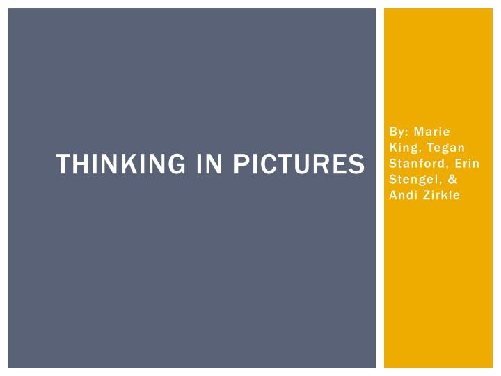 thinking in pictures n.