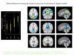 default network connectivity predicts conversion to dementia in subjects at risk