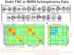 static fnc in fbirn schizophrenia data n 315 hc sz