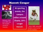 mascot cougar