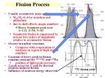 fission process
