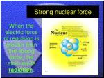 strong nuclear force1