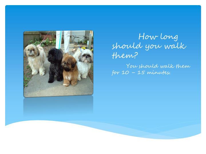 How long should you walk them?