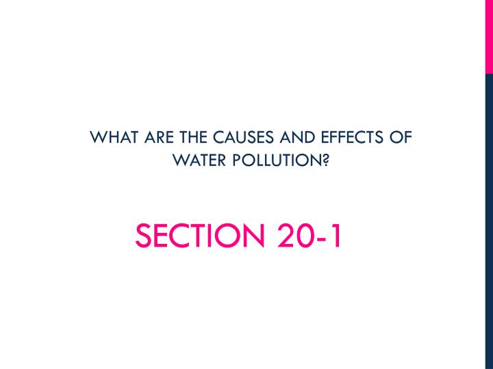 Section 20 1