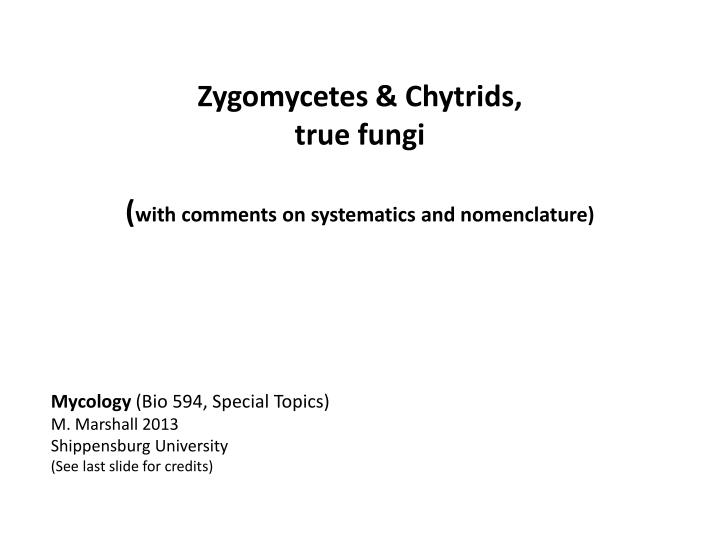 zygomycetes chytrids true fungi with comments on systematics and nomenclature n.