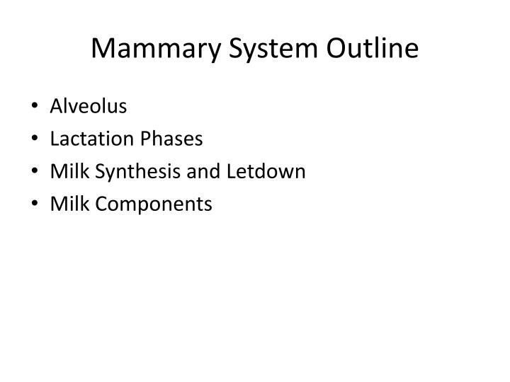 Mammary System Outline