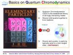basics on q uantum c hromo d ynamics