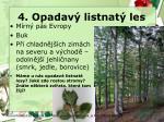 4 opadav listnat les