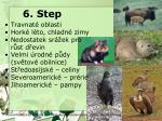 6 step