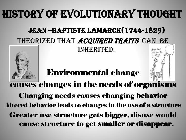 history of evolution essay The journal of human evolution concentrates on publishing the highest quality papers covering all aspects of human evolutionthe central focus is aimed jointly at palaeoanthropological work, covering human and primate fossils, and at comparative studies of living species, including both morphological and molecular evidence.