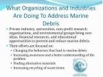 what organizations and industries are doing to address marine debris