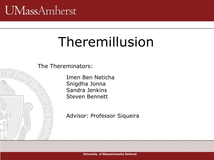 theremillusion n.