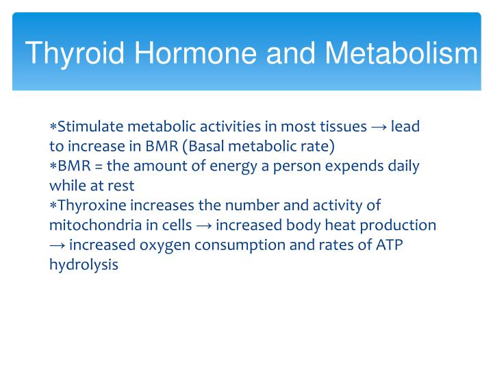 Thyroid Hormone and Metabolism