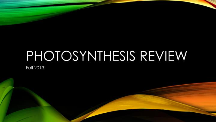 photosynthesis review n.