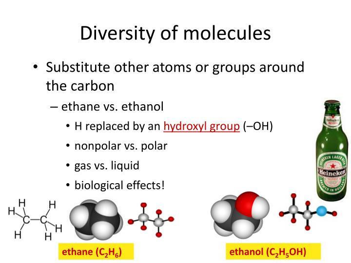 Diversity of molecules