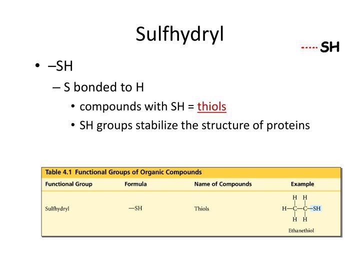 Sulfhydryl