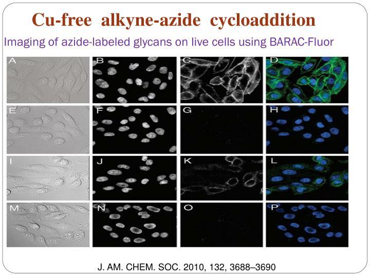 Cu-free  alkyne-