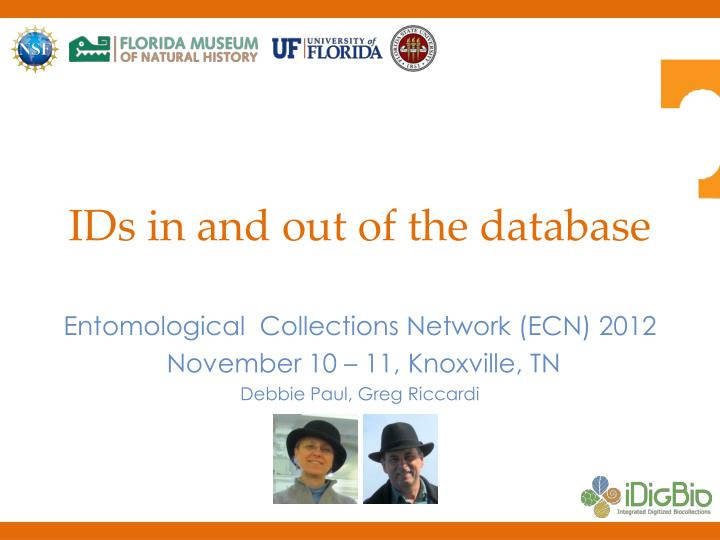 ids in and out of the database n.