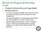 benefits for pregnant parenting youth