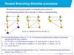 rooted branching bisimilar processes