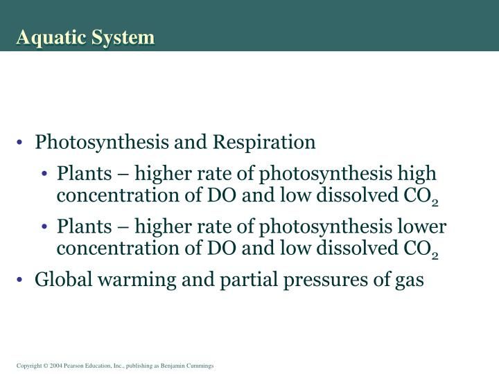 Aquatic System