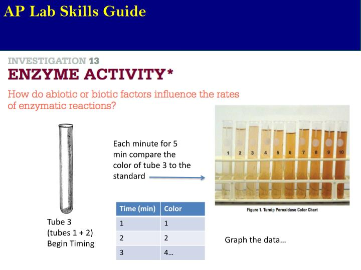 Ppt Ap Lab Skills Guide Powerpoint Presentation Id2135606