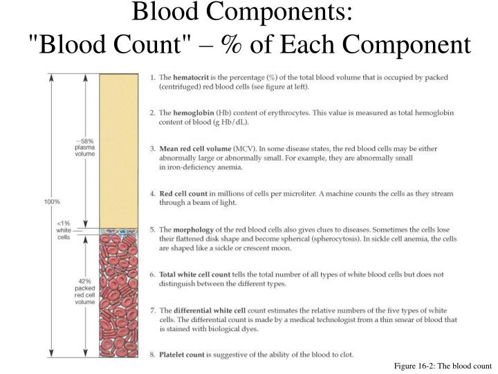 Blood components blood count of each component