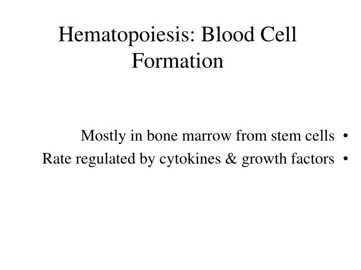 Hematopoiesis: Blood Cell Formation