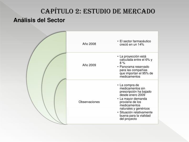Capítulo 2: estudio de mercado