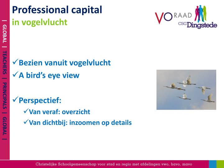 Professional capital in vogelvlucht