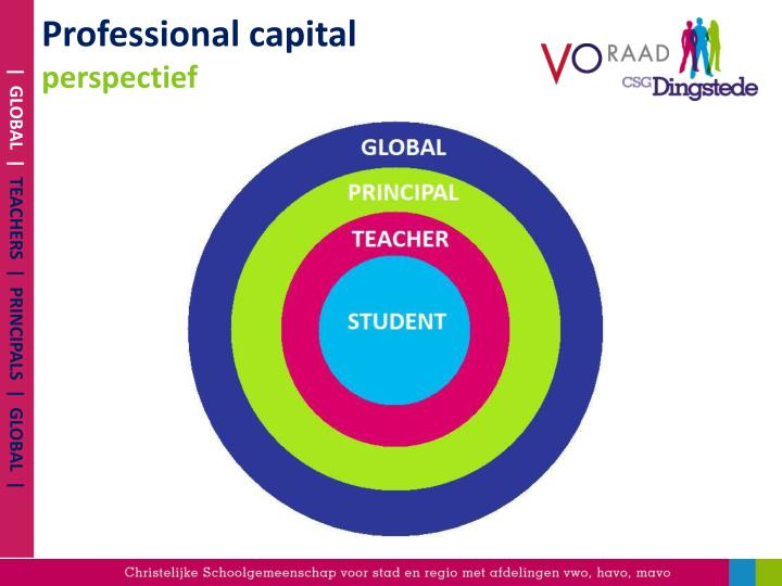Professional capital perspectief