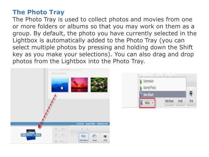 The Photo Tray
