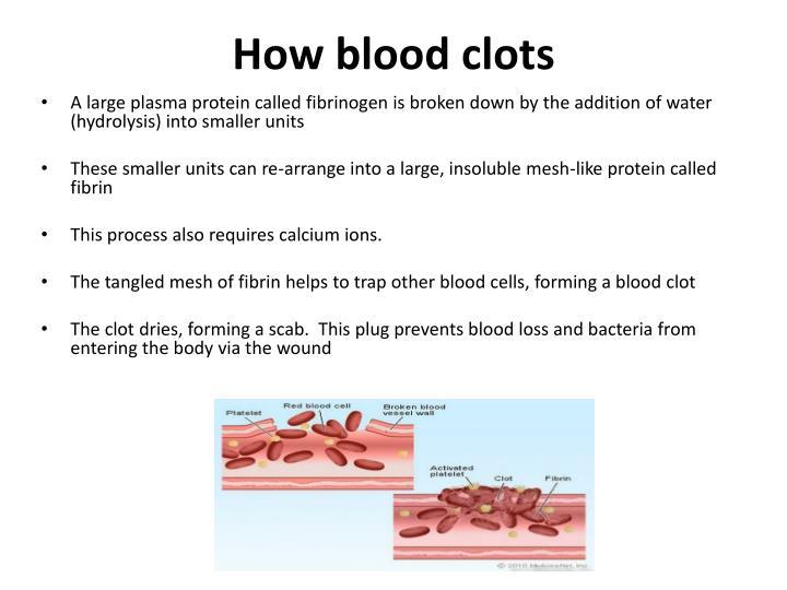 How blood clots