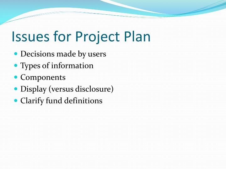 Issues for Project Plan